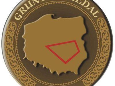 Grafika Grunt na medal 2021