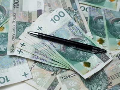 Ustalono maksymalną kwotę dotacji w kwocie 10 000 zł, minimalną – w kwocie 2 000 zł. Fot. Freepik